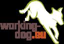 Celina-Enya auf Working Dog